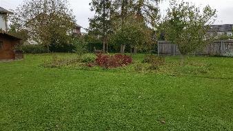 Leistbares, sonniges Grundstück in Wels-Stadlhof  Optimale Grundstücksgröße!