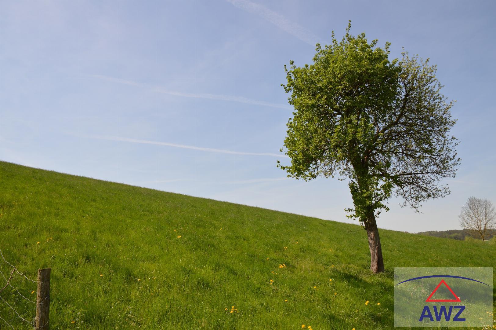 Schönes Grünland (kein Baugrund) in Pennewang