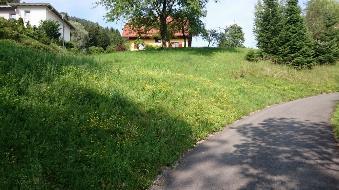 Laufnitzdorf *Baugrund in sonniger Steillage*