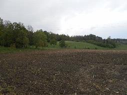 landwirt com singles kirchdorf an der krems