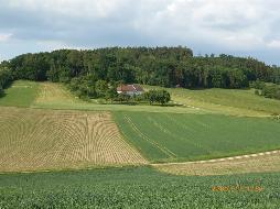 ALLEINLAGE - Naturjuwel mit ca. 3 ha Grund im Bezirk Eferding