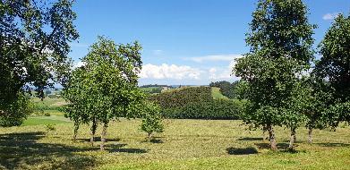 Landwirtschaft in Alleinlage