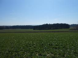 Schöner Hof mit ca. 16 ha, Alleinlage
