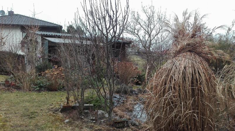 Baugrund mit Wochenendhäuschen - Wald und Wiese sind Ihre neuen Nachbarn