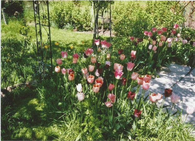 HAUS für Natur- & Gartenliebhaber!